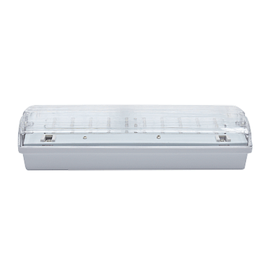 NBB CARLA-2 16 LED 230-240V 3h TP IP65 910107000
