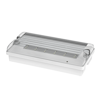 NBB FLAT 12LED Em3h DP/TP IP65 clear + piktogram